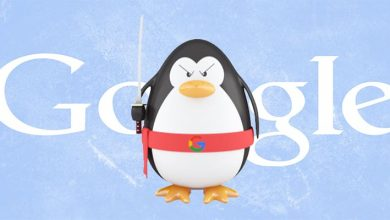 صورة معلومات هامة جداً عن جوجل البطريق Google Penguin